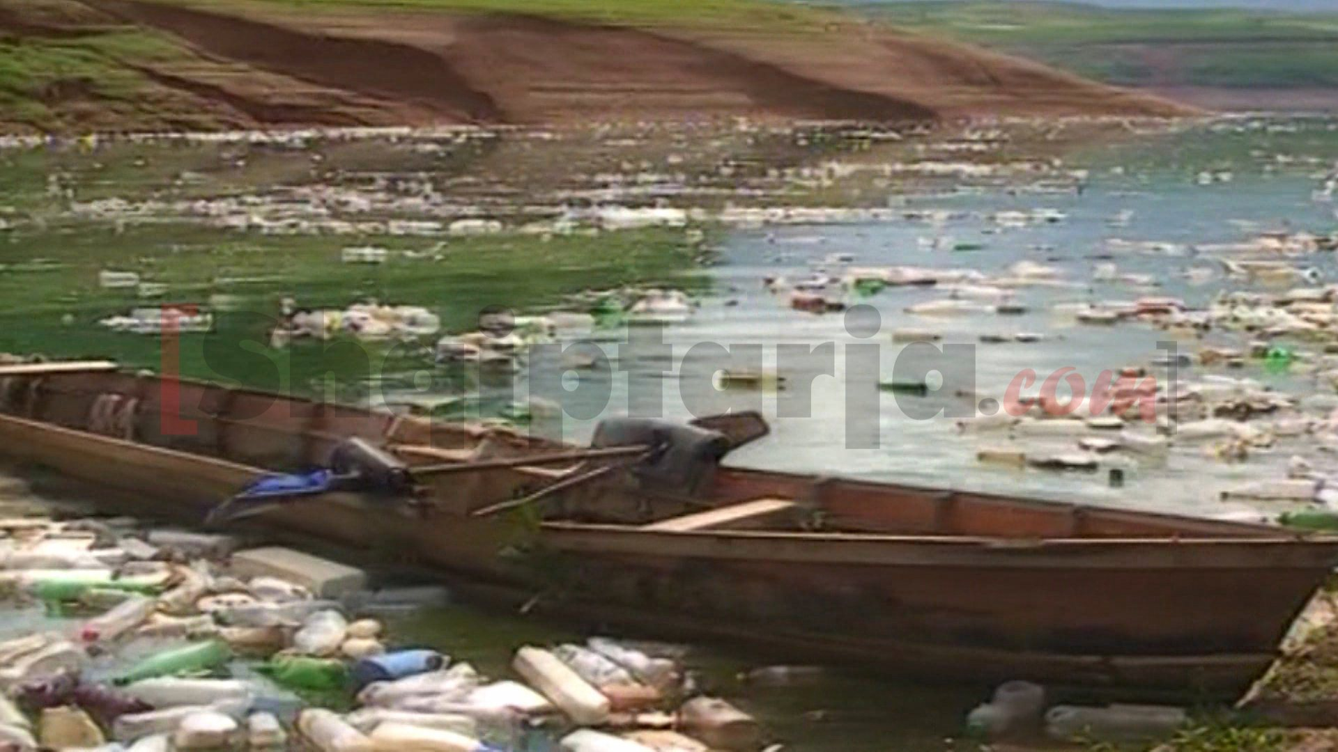 liqenit te fierzes i ndotur