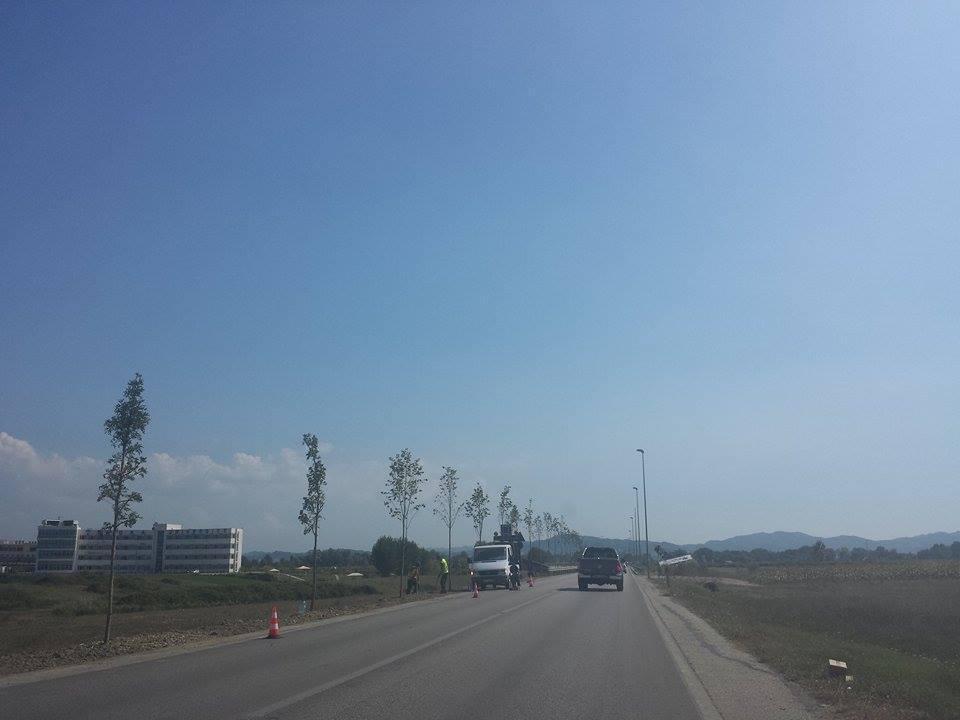 Lajm Projektin-Kombetar-te-Gjelberimitnis-mbjellja-e-pemeve-Rinas-Tirane