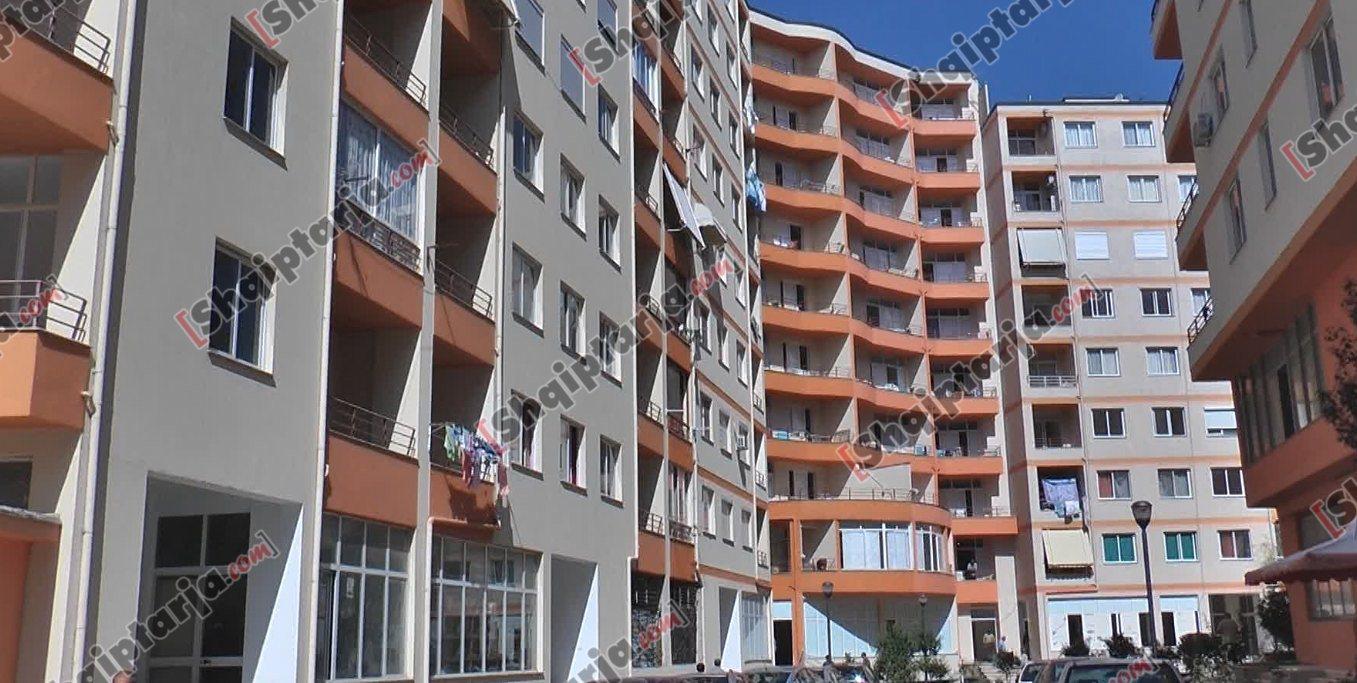 muxhahedinet ne shqiperi