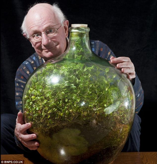 britani, bima ne qeld e David Latimer